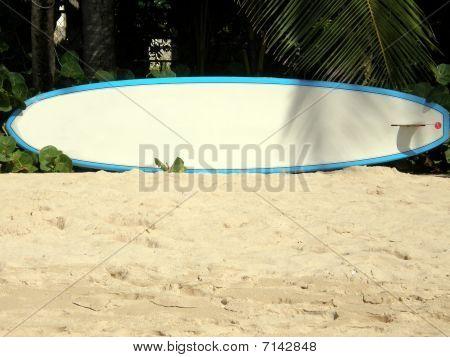 surf board on beach