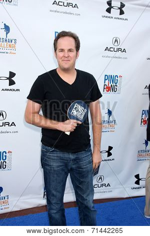 LOS ANGELES - SEP 4:  David Berman at the Ping Pong 4 Purpose Charity Event at Dodger Stadium on September 4, 2014 in Los Angeles, CA