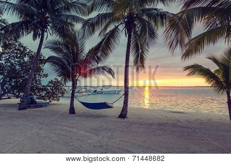 beach, summer and leisure concept - blue hammock on tropical beach