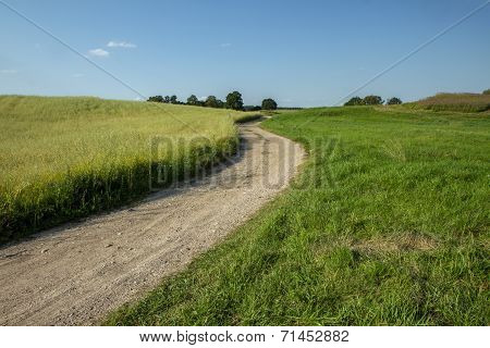 Wheat To The Road