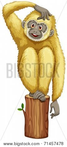 Illustration of a yellow chimpanzee on a white background