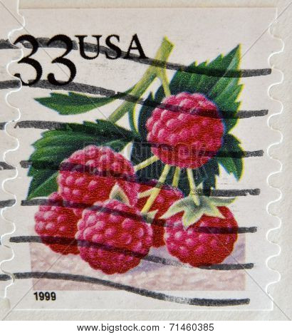 UNITED STATES OF AMERICA - CIRCA 1999: A stamp printed in USA shows Raspberries circa 1999