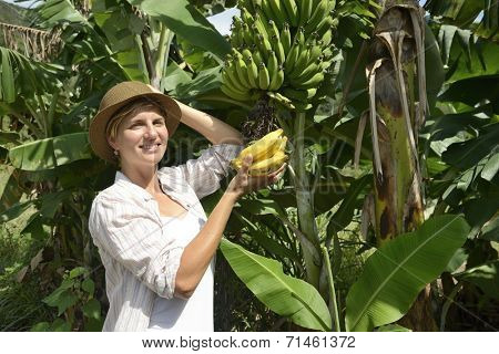 Agriculture: Woman visiting banana plantation