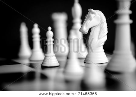Chess pieces, with focus on white knight.  Black and white image.