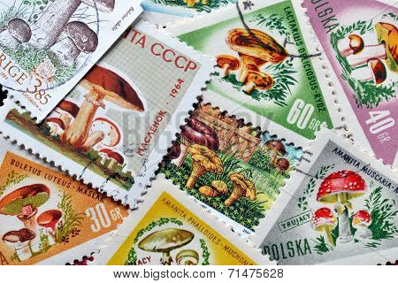 Mushrooms on stamps