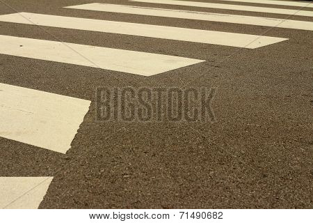 Crossing The Street In A Crosswalk.