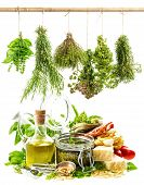 image of pesto sauce  - pesto sauce and italian food ingredients on white background - JPG