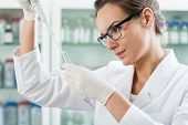 picture of scientist  - Scientist using pipette in a laboratory horizontal - JPG