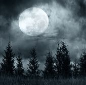 stock photo of mystery  - Magic landscape with pine tree forest under dramatic cloudy sky at full moon mysterious night - JPG