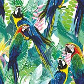 image of jungle birds  - seamless pattern of colorful parrots and exotic flowers - JPG