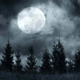 pic of moon silhouette  - Magic landscape with pine tree forest under dramatic cloudy sky at full moon mysterious night - JPG