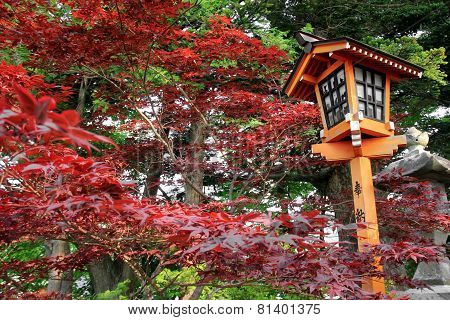 Japanese Style Lamp During Autumn Season