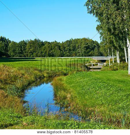 Field Estonian landscape composition
