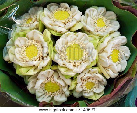 Folding Lotus Bouquet