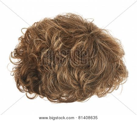 Hair wig isolated