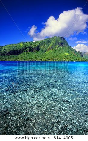French Polynesia Tropical Scenery