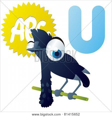 animal abc learning for kids: U is for cute little Umbrella bird, vector illustration set for children, bright colors for flash card game