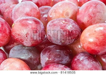 Red Grape With Water Drops On White Background