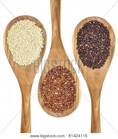 white, red and black quinoa grains on wooden spoons