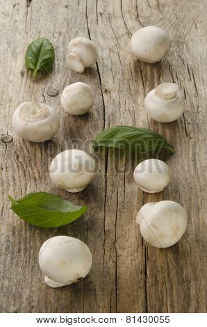 Baby Button Mushrooms On Wood