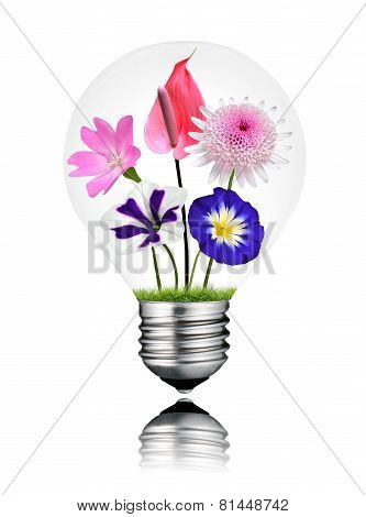 Various Colorful Flowers Growing Inside Light Bulb Isolated