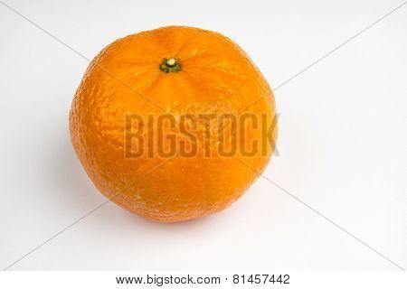 Single Orange On A White Background