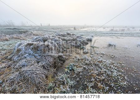 Farmland On A Cold Misty Winter Morning