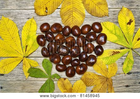 Beautiful Colorful Composition With Chestnut Heart And Fallen Leaves On Old Wooden Board.