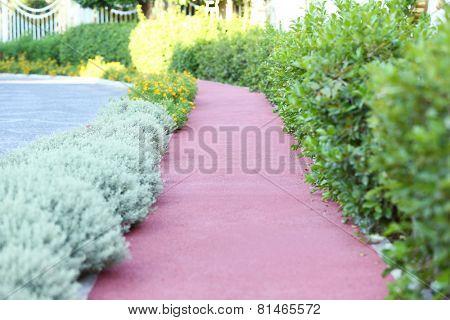 Landscaping of walkway in park