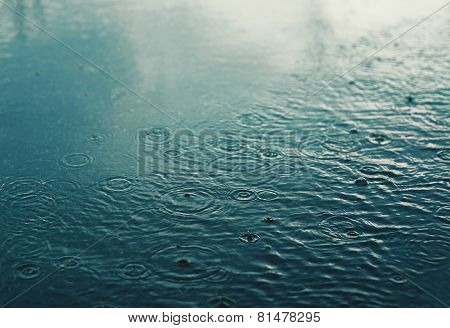 Rain, Autumn Day, Urban Scene, Weather - Concept