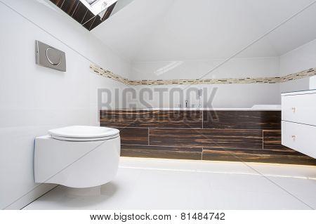 Luxury Elegant Washroom Interior