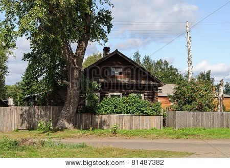 Old Log House With A Big Tree In Front