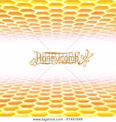 Vector honeycomb background from yellow to white colors