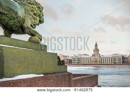 Cabinet Of Curiosities In St. Petersburg At Dawn In Winter. Russia