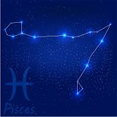 stock photo of pisces  - vector illustration of constellation - JPG