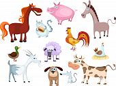pic of wild donkey  - vector illustration of a new farm animal set - JPG