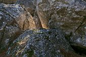 pic of coniferous forest  - huge gray stones in the coniferous forest - JPG