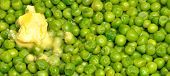 picture of green pea  - Freshly cooked green garden peas with melting butter - JPG