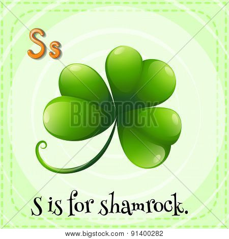 Flashcard letter S is for shamrock