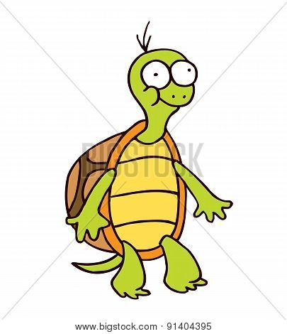 turtle cartoon smiling funny character