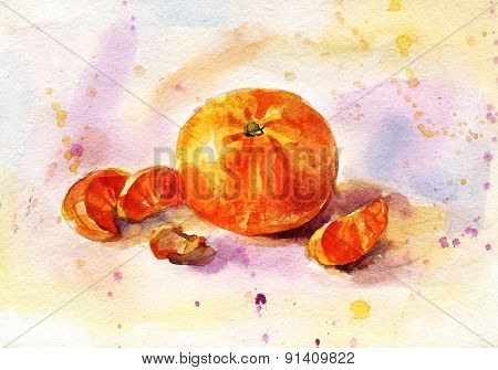 Watercolor Tangerine Hand-drawing