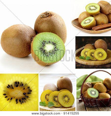 collage of green and yellow organic kiwi fruit