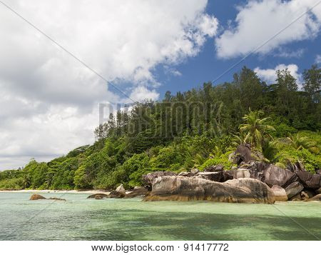 Beautiful Island With Coconut Palms