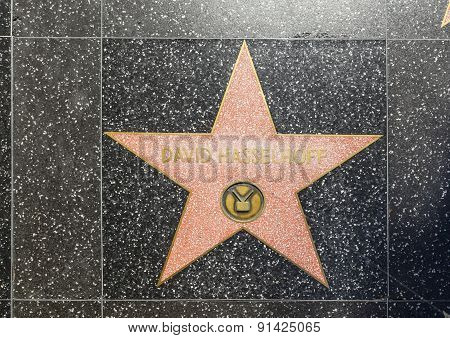 David Hasselhoffs Star On Hollywood Walk Of Fame