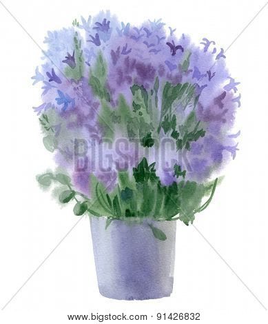 Watercolor bouquet of campanula. Vector illustration