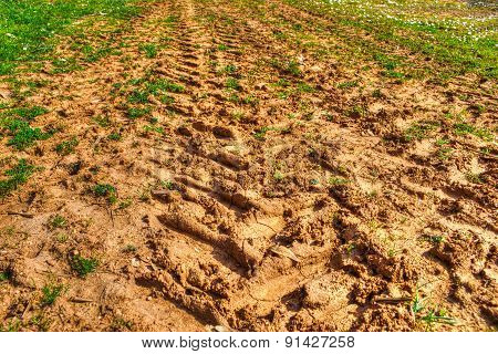 Tractor Trail On Soil