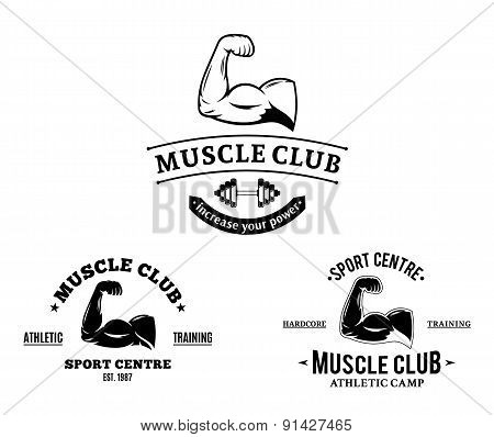 Sport Club and Fitness Gym Labels and Emblems