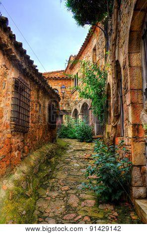 Medieval Steet