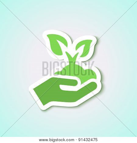 Ecology Business Background