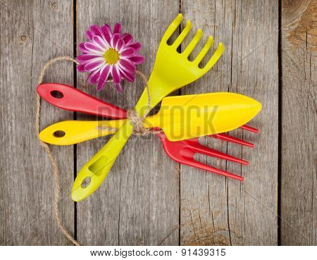 Garden tools with flower on wooden table background